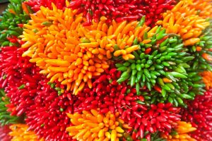 Multicolored chili pepper bunches on the Venice market