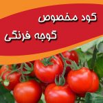 کود مخصوص گوجه فرنگی | tomato fertilizer